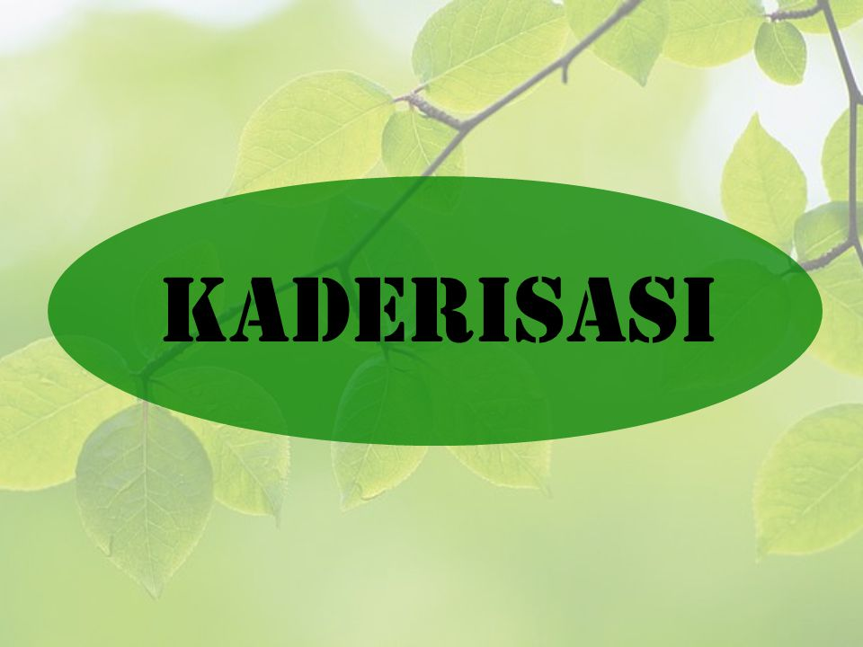 KADERISASI