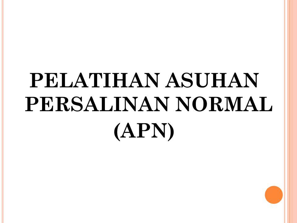 PELATIHAN ASUHAN PERSALINAN NORMAL (APN)