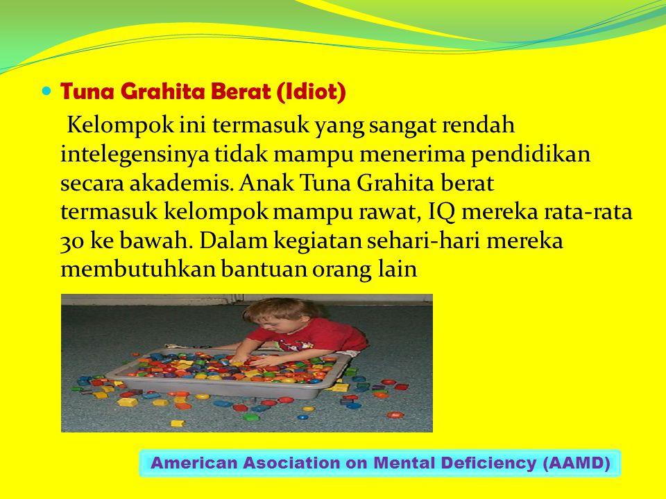 Tuna Grahita Berat (Idiot) Kelompok ini termasuk yang sangat rendah intelegensinya tidak mampu menerima pendidikan secara akademis. Anak Tuna Grahita