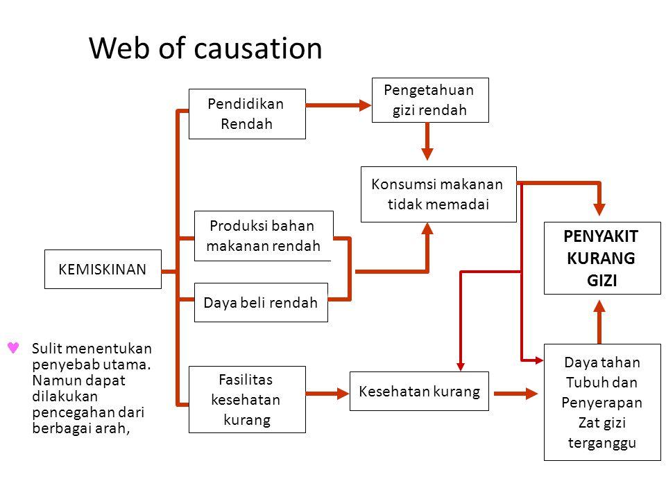 Web of causation Sulit menentukan penyebab utama. Namun dapat dilakukan pencegahan dari berbagai arah, Pendidikan Rendah KEMISKINAN Produksi bahan mak