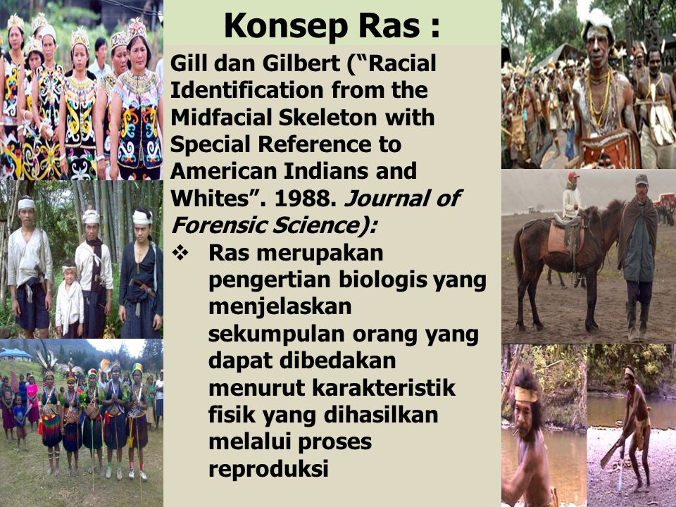 Konsep Ras : Gill dan Gilbert ( Racial Identification from the Midfacial Skeleton with Special Reference to American Indians and Whites .