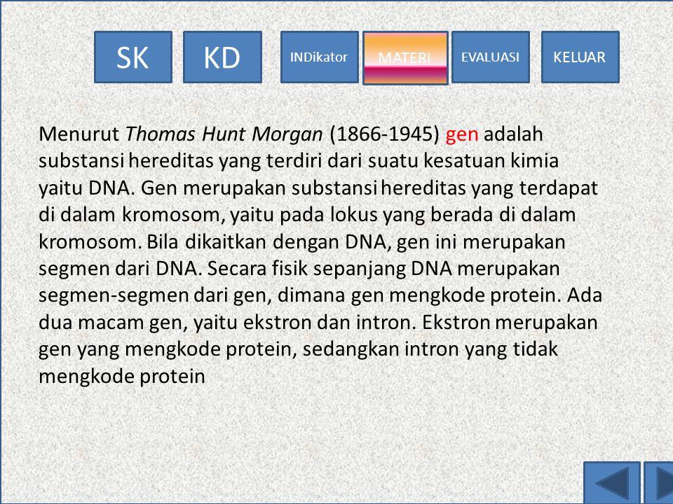 EVALUASI MATERI INDikator KDSK KELUAR MATERI HK.I MENDEL GEN RNA SONTESA POLIPEPTIDA DNA TRANSKRIPSI DNA HK. II MENDEL SIFAT STRUKTURMACAM STRUKTUR RN