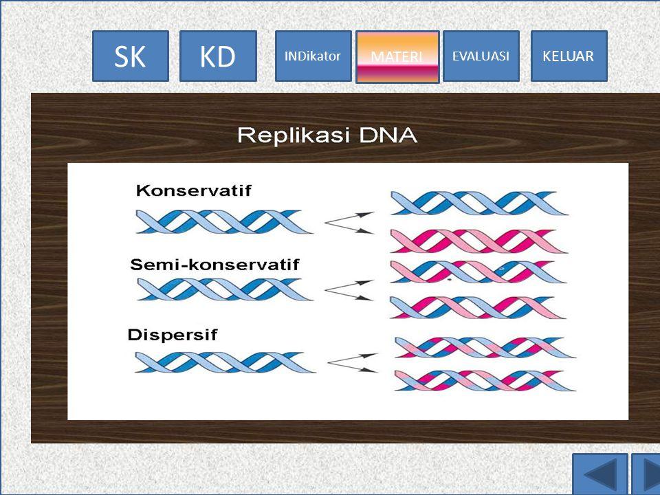 EVALUASI MATERI INDikator KDSK KELUAR GC AT TA CG Keteranga = pospat = gula = basa ---- = ikatan hidrogen DI CEK IKATANX KRG