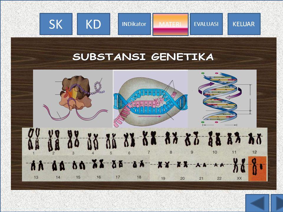 EVALUASI MATERI INDikator KDSK KELUAR MATERI Jumlah kromosom Pada organisme tingkat tinggi, sel somatis/sel tubuhnya mengandung satu pasang kromosom,