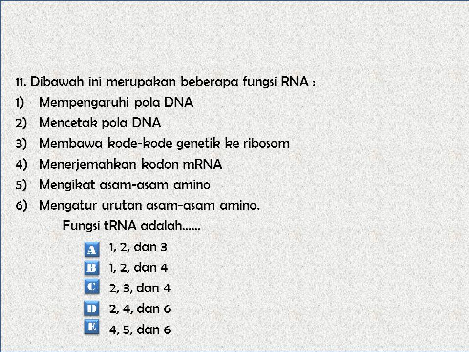 10. Proses sintesis protein diawali dengan peristiwa transkripsi yang merupakan peristiwa….. Penyalinan kode genetika dari DNA oleh mRNA Penguraian ut
