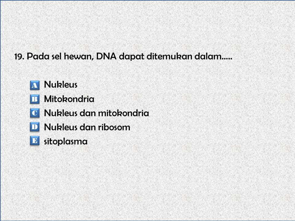 18. Kromosom tubuh (autosom) tidak dijumpai pada sel-sel… Eritrosis Leukosit Sel-sel kulit Sel-sel akar rambut Sel-sel kelamin A A B B C C D D E E