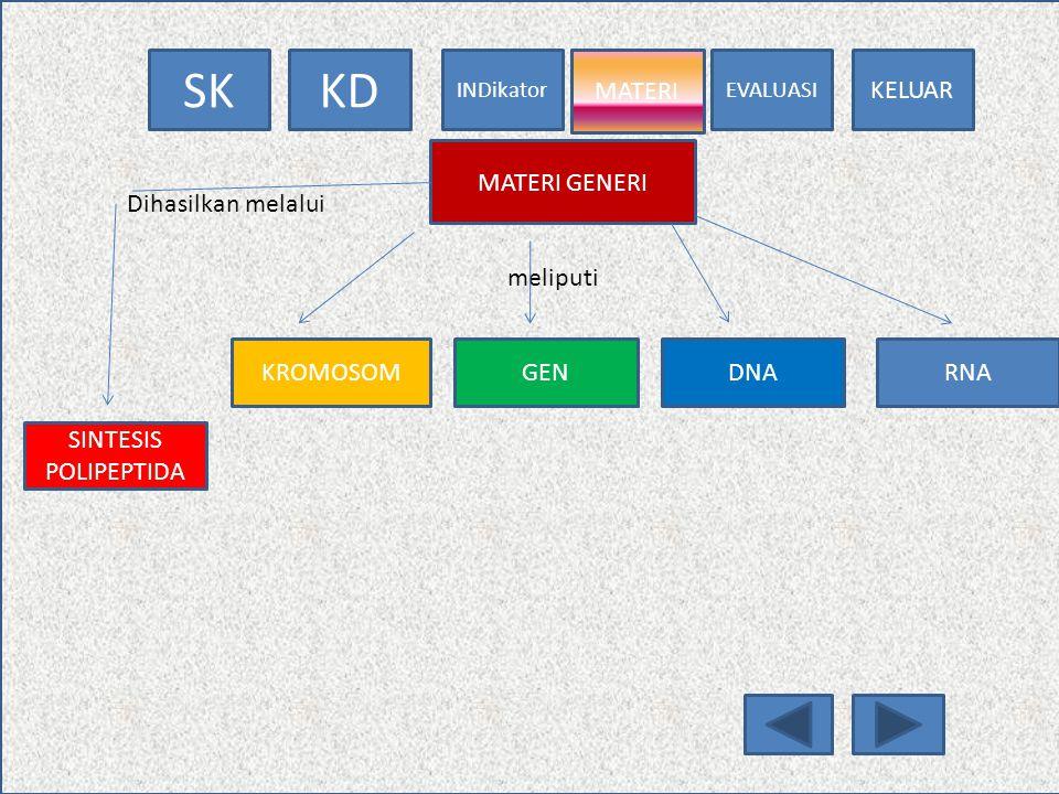 EVALUASI MATERI INDikator KDSK KELUAR INDIKATOR 1.MENJELASKAN KONSEP TENTANG GEN 2.MENJELASKAN FUNGSI GEN 3.MENDISKRIPSIKAN PENGERTIAN DNA 4.MENJELASK