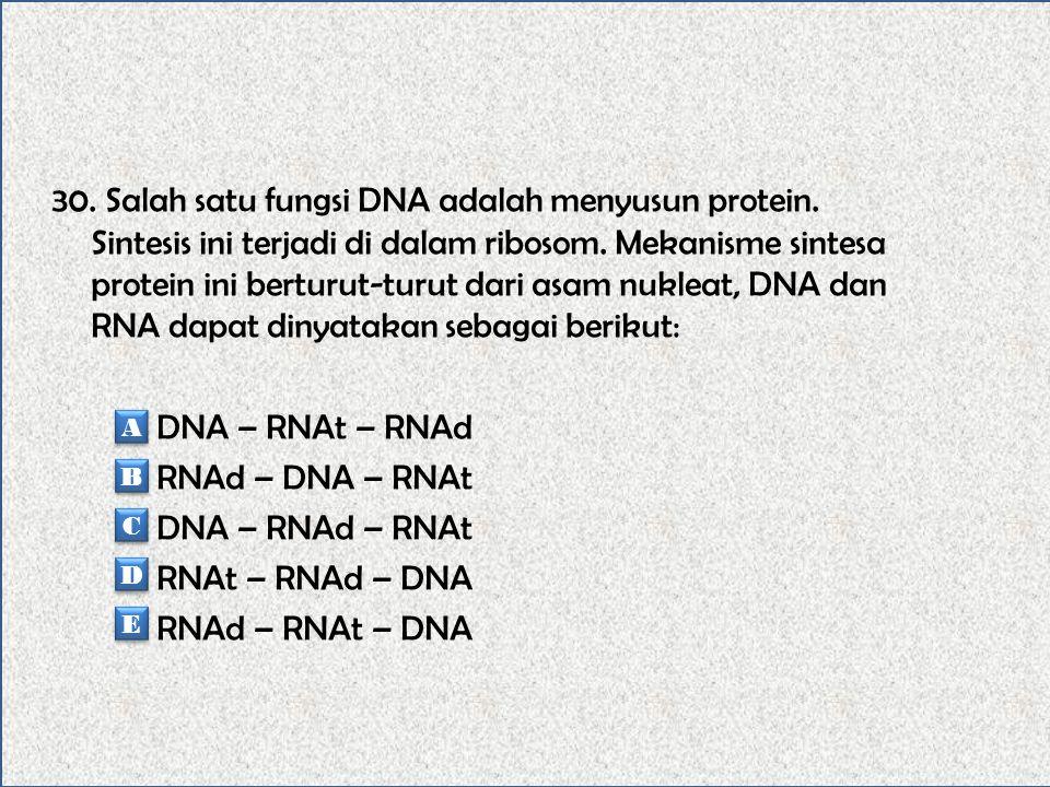 29. Berikut basa nitrogen yang menyusun DNA 1. Adenin 2. Sitosin 3. Guanine 4. Timin Basa nitrogen dari golongan pirimidin adalah … 1 dan 2 2 dan 3 3