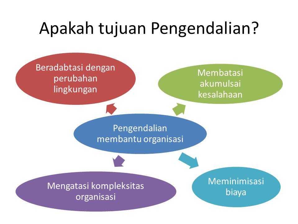 Apakah tujuan Pengendalian? Pengendalian membantu organisasi Beradabtasi dengan perubahan lingkungan Membatasi akumulsai kesalahaan Mengatasi kompleks