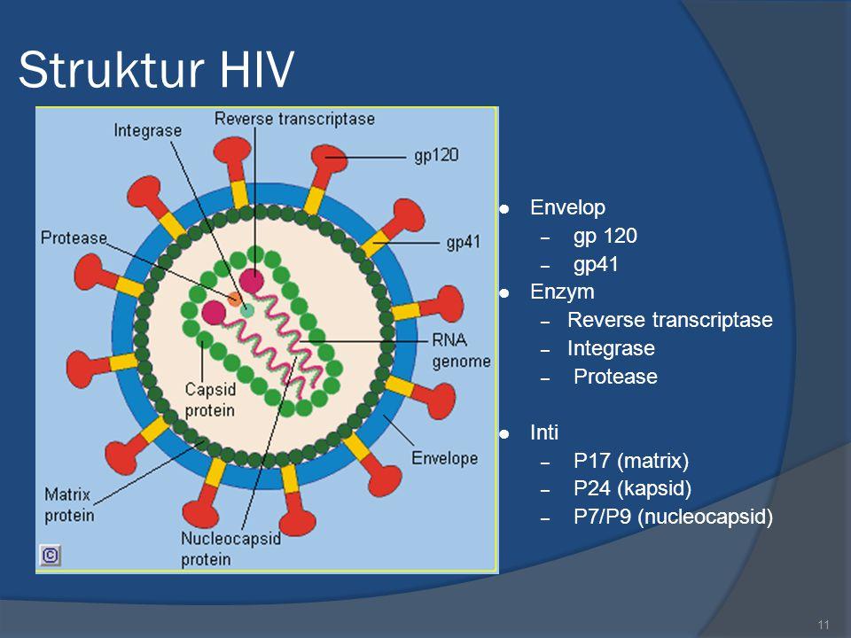 11 Struktur HIV Envelop – gp 120 – gp41 Enzym – Reverse transcriptase – Integrase – Protease Inti – P17 (matrix) – P24 (kapsid) – P7/P9 (nucleocapsid)