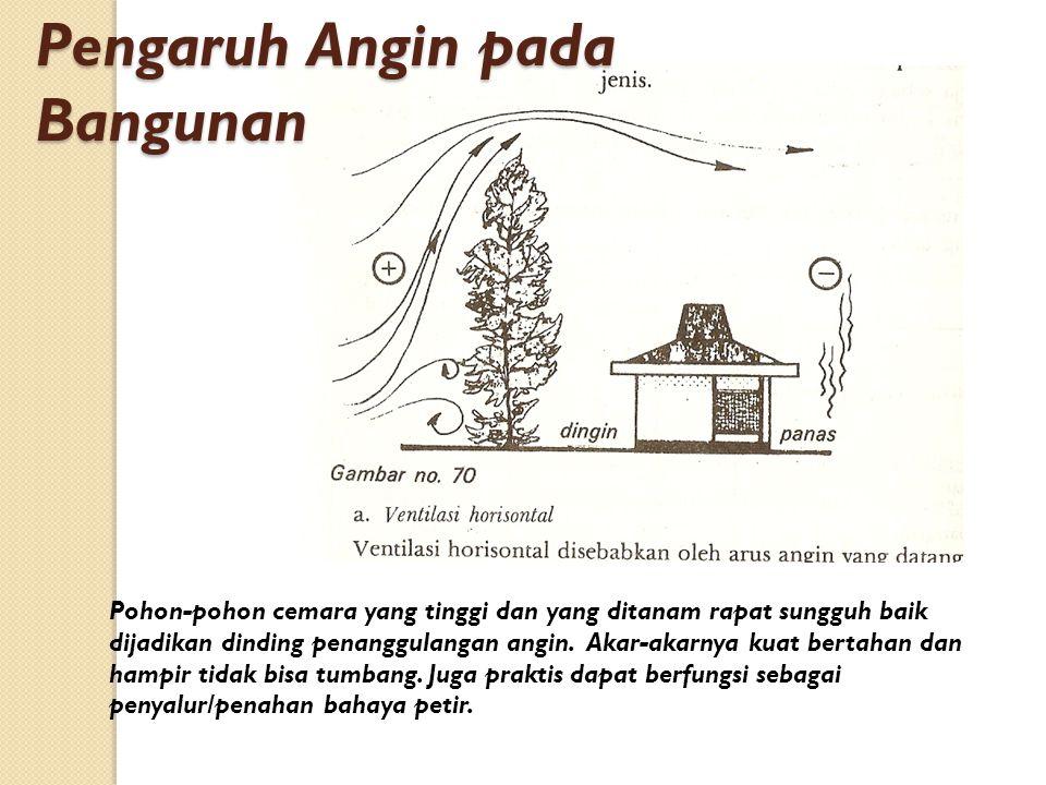 Pengaruh Angin pada Bangunan Pohon-pohon cemara yang tinggi dan yang ditanam rapat sungguh baik dijadikan dinding penanggulangan angin. Akar-akarnya k