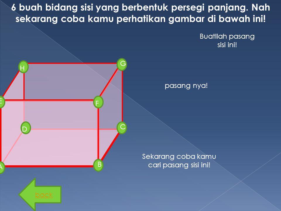 B G D F H E C A 6 buah bidang sisi yang berbentuk persegi panjang. Nah sekarang coba kamu perhatikan gambar di bawah ini! Sekarang coba kamu cari pasa
