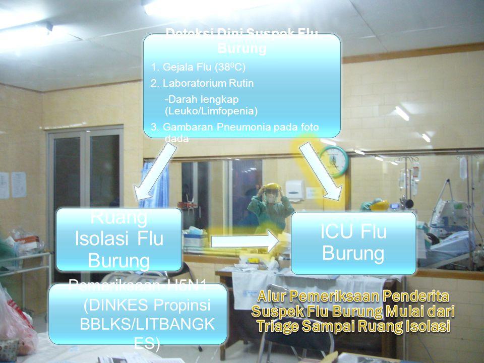 Deteksi Dini Suspek Flu Burung 1. Gejala Flu (38 0 C) 2. Laboratorium Rutin -Darah lengkap (Leuko/Limfopenia) 3. Gambaran Pneumonia pada foto dada Pem