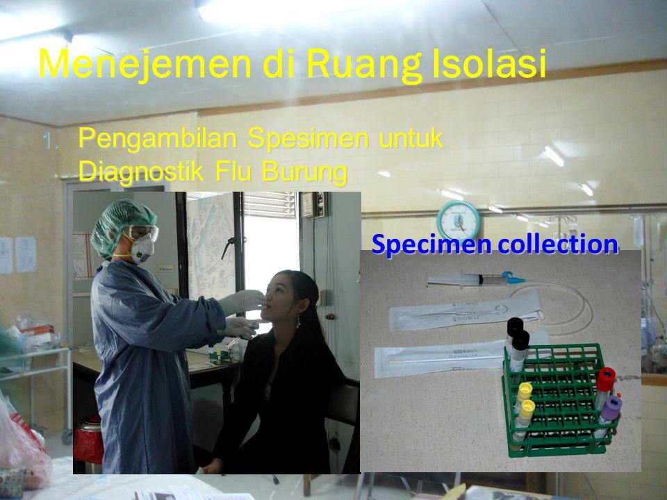 Menejemen di Ruang Isolasi 1.Pengambilan Spesimen untuk Diagnostik Flu Burung 2.