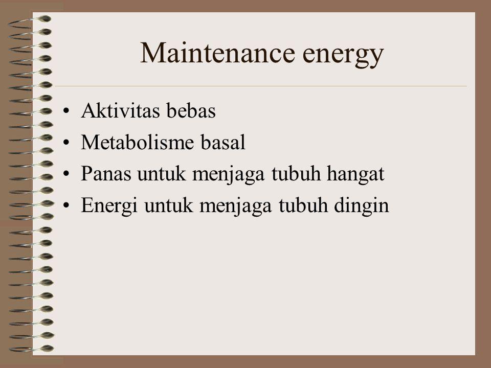Maintenance energy Aktivitas bebas Metabolisme basal Panas untuk menjaga tubuh hangat Energi untuk menjaga tubuh dingin