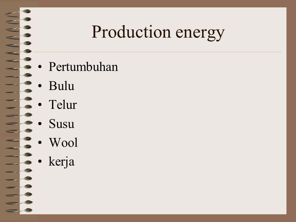Production energy Pertumbuhan Bulu Telur Susu Wool kerja