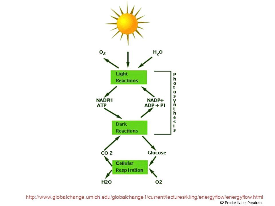 http://www.globalchange.umich.edu/globalchange1/current/lectures/kling/energyflow/energyflow.html S2 Produktivitas Perairan