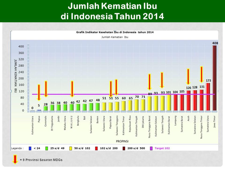 Jumlah Kematian Bayi di Indonesia Tahun 2014 = 9 Provinsi Sasaran MDGs