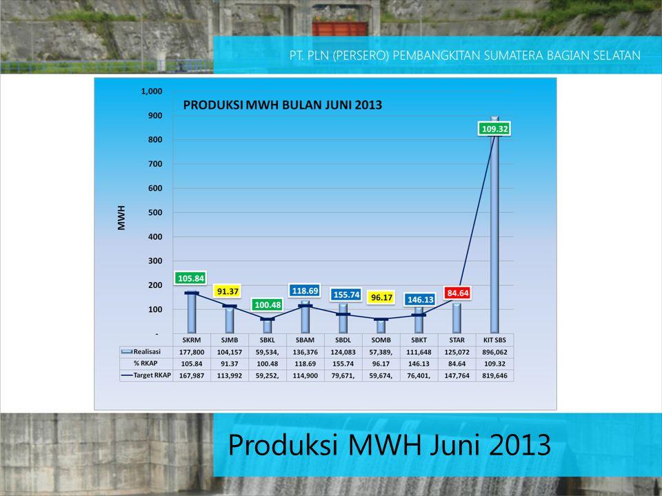 Produksi MWH Juni 2013