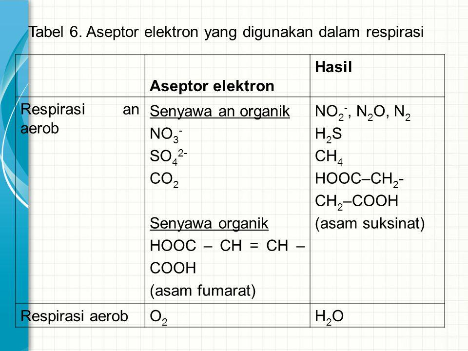 Tabel 6. Aseptor elektron yang digunakan dalam respirasi Aseptor elektron Hasil Respirasi an aerob Senyawa an organik NO 3 - SO 4 2- CO 2 Senyawa orga