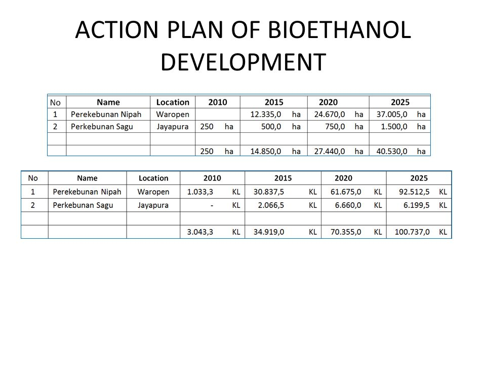 ACTION PLAN OF BIOETHANOL DEVELOPMENT