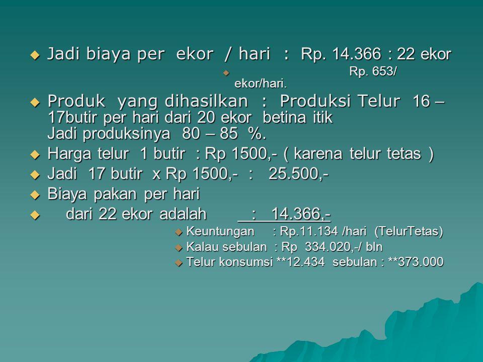  Jadi biaya per ekor / hari : Rp. 14.366 : 22 ekor  Rp. 653/ ekor/hari.  Produk yang dihasilkan : Produksi Telur 16 – 17butir per hari dari 20 ekor