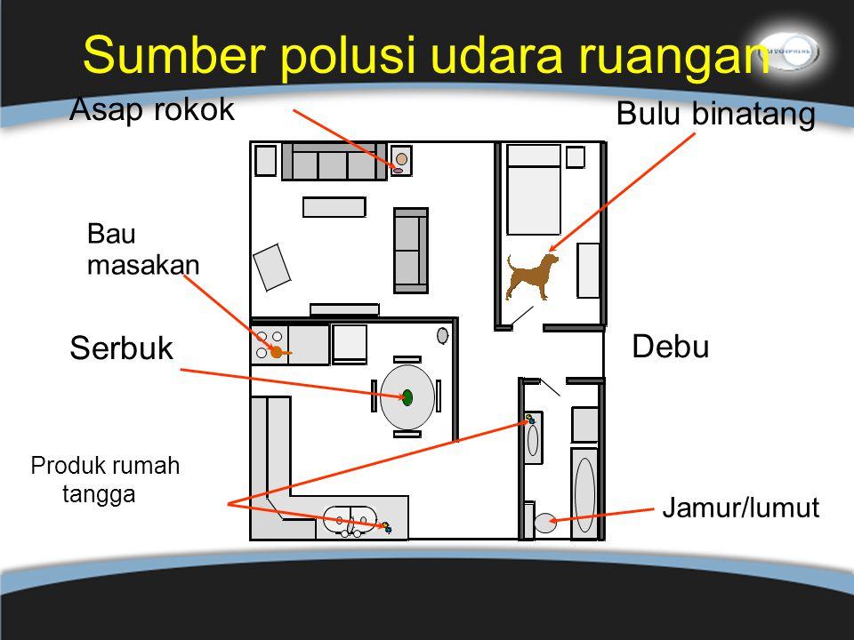 Sumber polusi udara ruangan Bulu binatang Bau masakan Jamur/lumut Debu Serbuk Asap rokok Produk rumah tangga