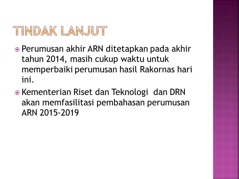  Perumusan akhir ARN ditetapkan pada akhir tahun 2014, masih cukup waktu untuk memperbaiki perumusan hasil Rakornas hari ini.  Kementerian Riset dan