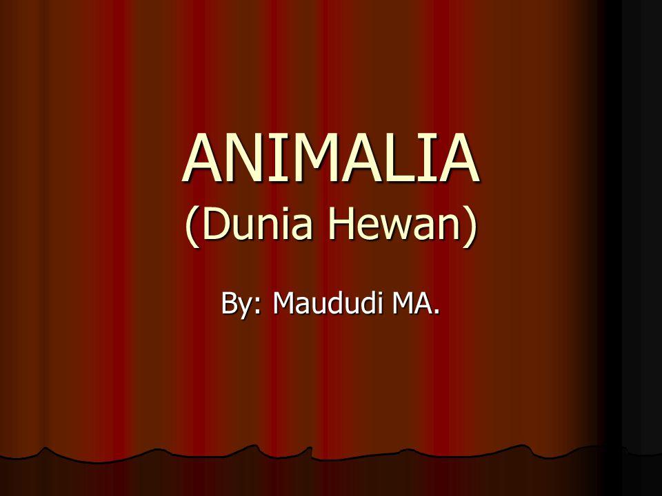 ANIMALIA (Dunia Hewan) By: Maududi MA.