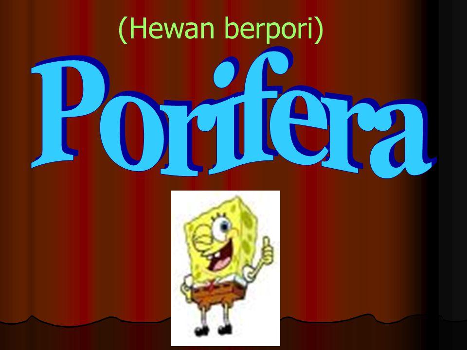 Invertebrata terdiri dari 8 filum: Porifera (Hewan berpori) Porifera (Hewan berpori) Coelenterata (Hewan berongga) Coelenterata (Hewan berongga) Platy