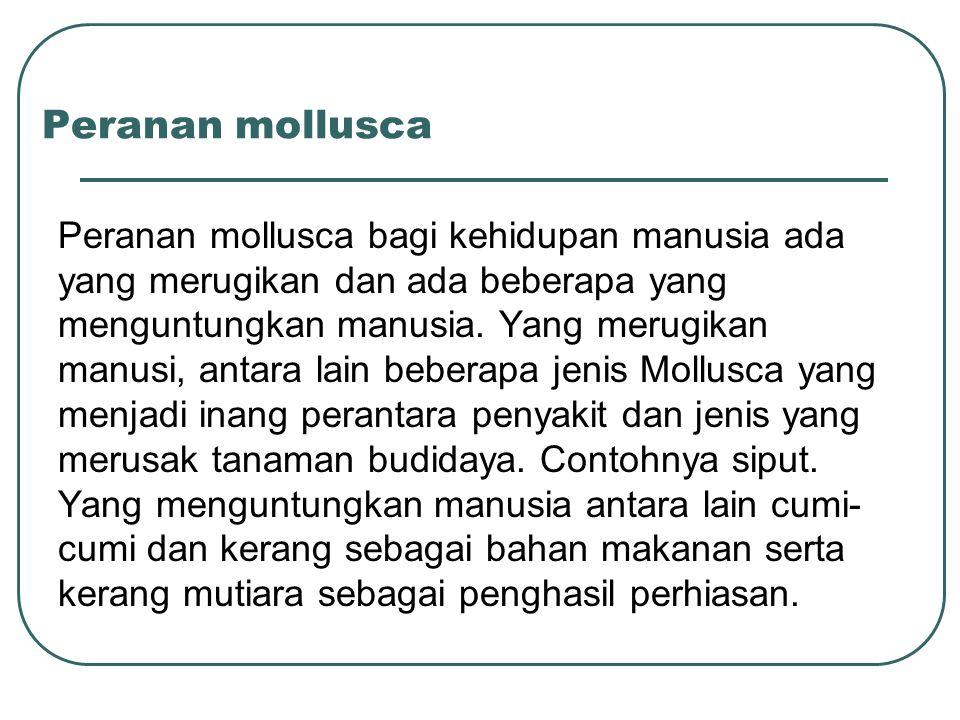 Peranan mollusca Peranan mollusca bagi kehidupan manusia ada yang merugikan dan ada beberapa yang menguntungkan manusia.