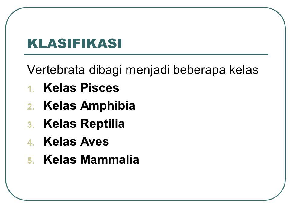 KLASIFIKASI Vertebrata dibagi menjadi beberapa kelas 1.