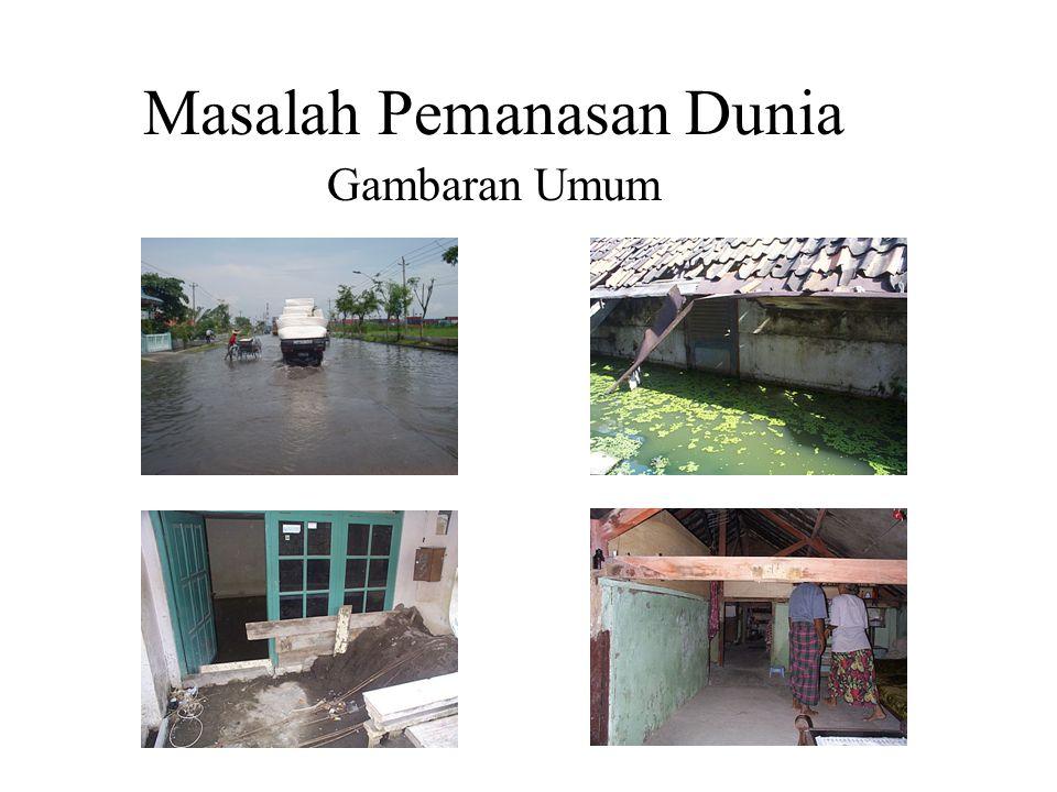 (1-1) Green coverage ratio 2 Target are : Bandung City, Sarijadi district (c.a.5ha)