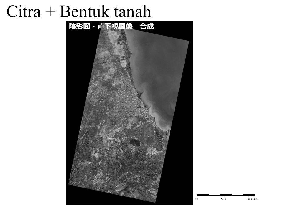 0 5.0 10.0km 陰影図・直下視画像 合成 Citra + Bentuk tanah