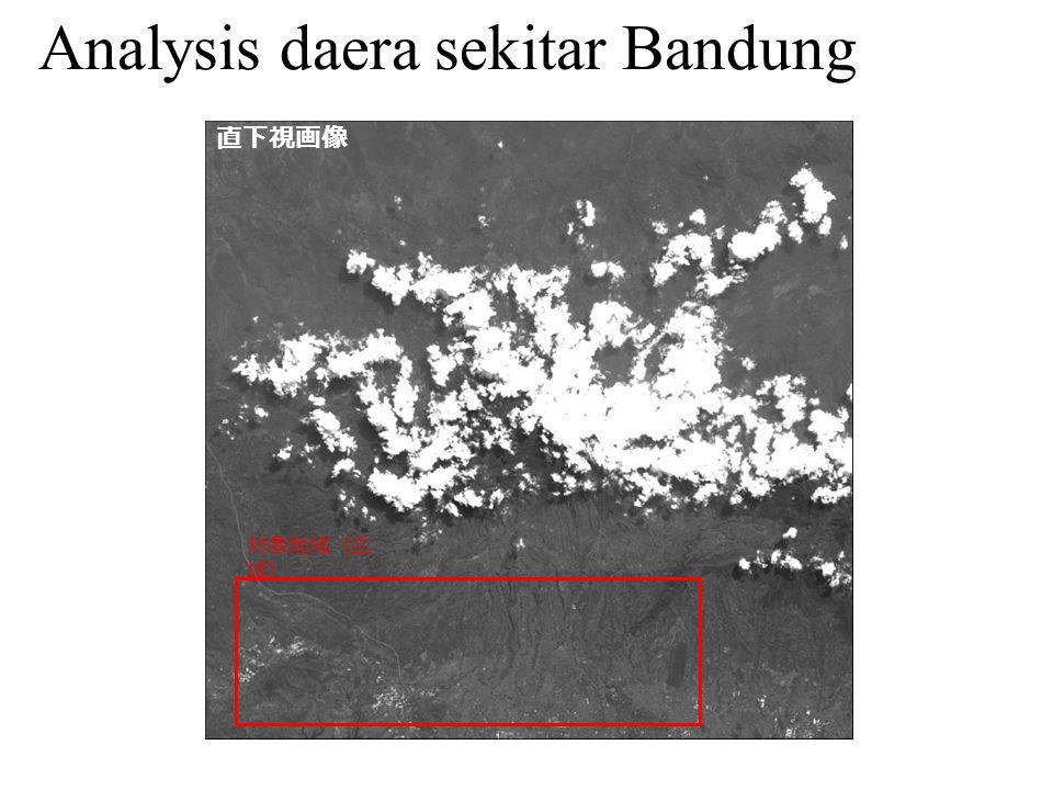 対象地域(広 域) Analysis daera sekitar Bandung 直下視画像