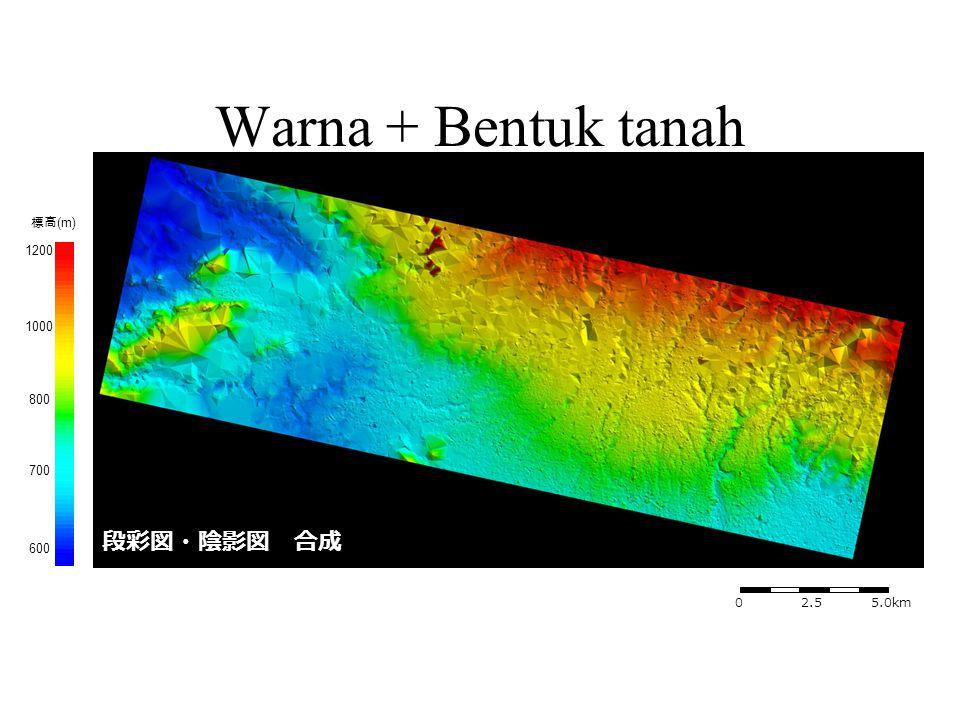 段彩図・陰影図 合成 1000 標高 (m) 0 2.5 5.0km 1200 800 700 600 Warna + Bentuk tanah