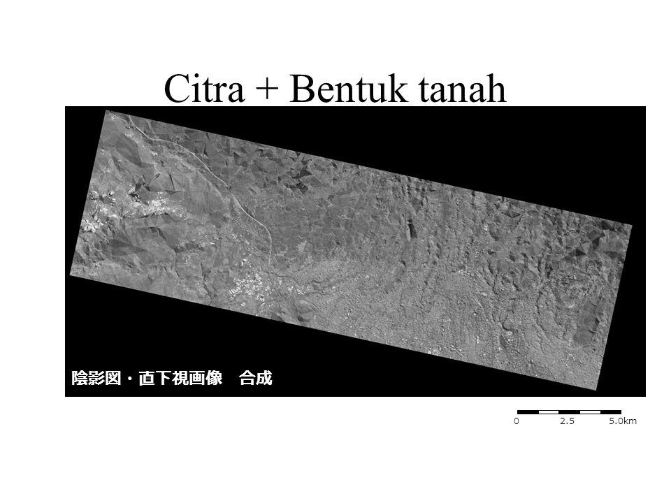 陰影図・直下視画像 合成 0 2.5 5.0km Citra + Bentuk tanah