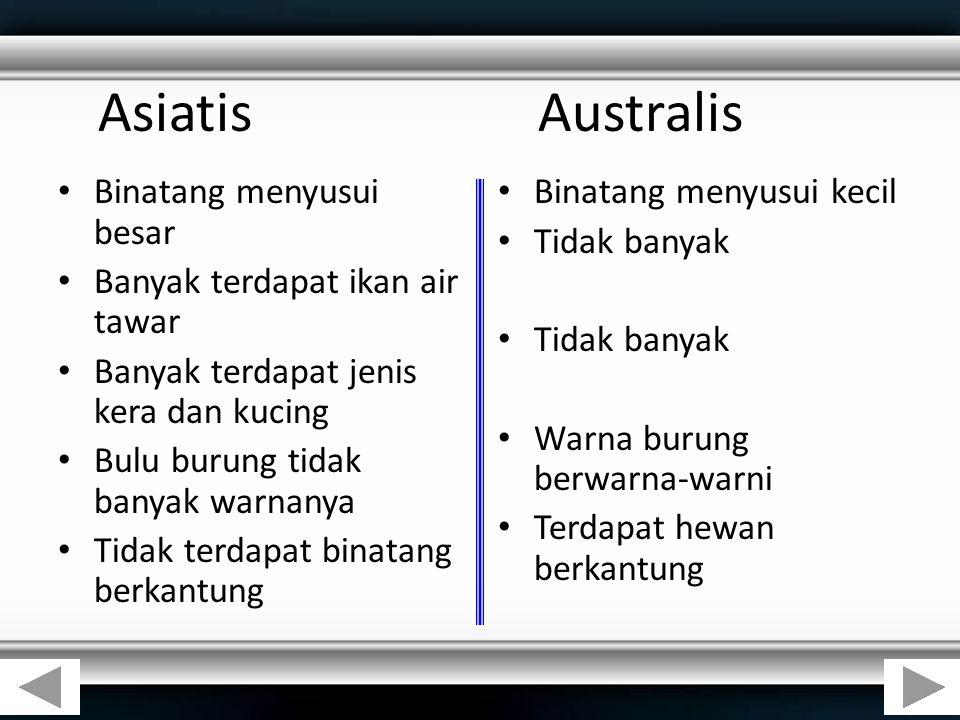 AsiatisAustralis Binatang menyusui besar Banyak terdapat ikan air tawar Banyak terdapat jenis kera dan kucing Bulu burung tidak banyak warnanya Tidak