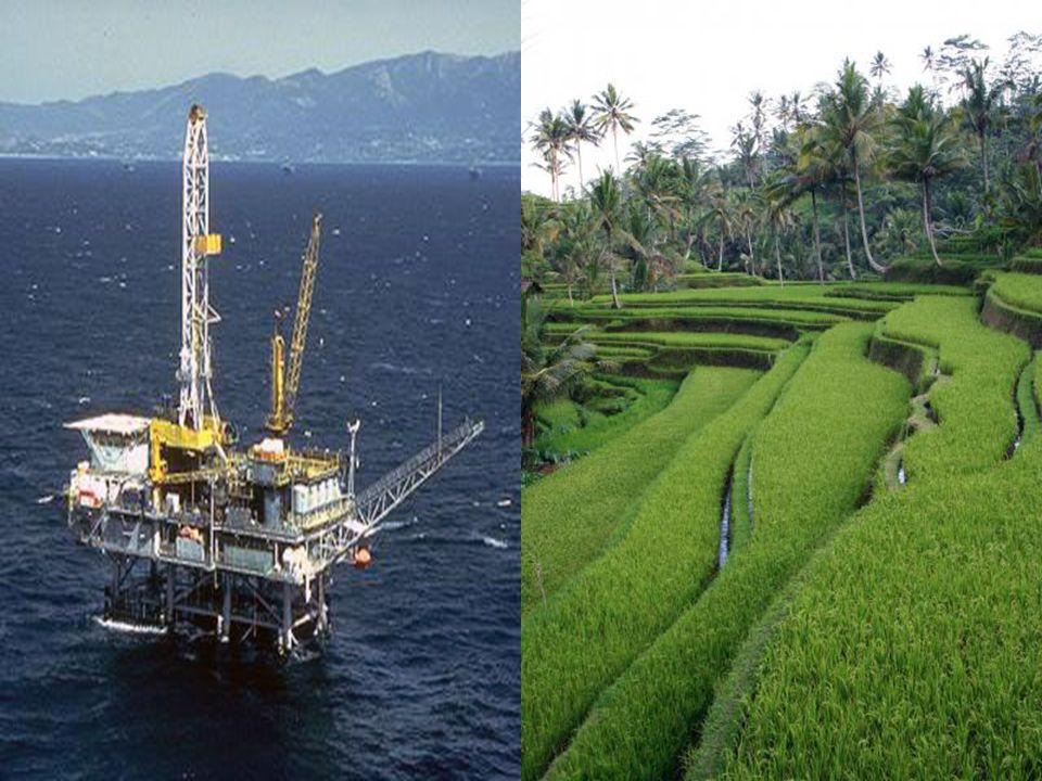 Foto minyak bumi, beras dll Foto minyak bumi, beras dll