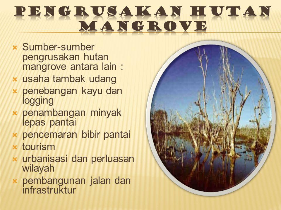  Sumber-sumber pengrusakan hutan mangrove antara lain :  usaha tambak udang  penebangan kayu dan logging  penambangan minyak lepas pantai  pencemaran bibir pantai  tourism  urbanisasi dan perluasan wilayah  pembangunan jalan dan infrastruktur