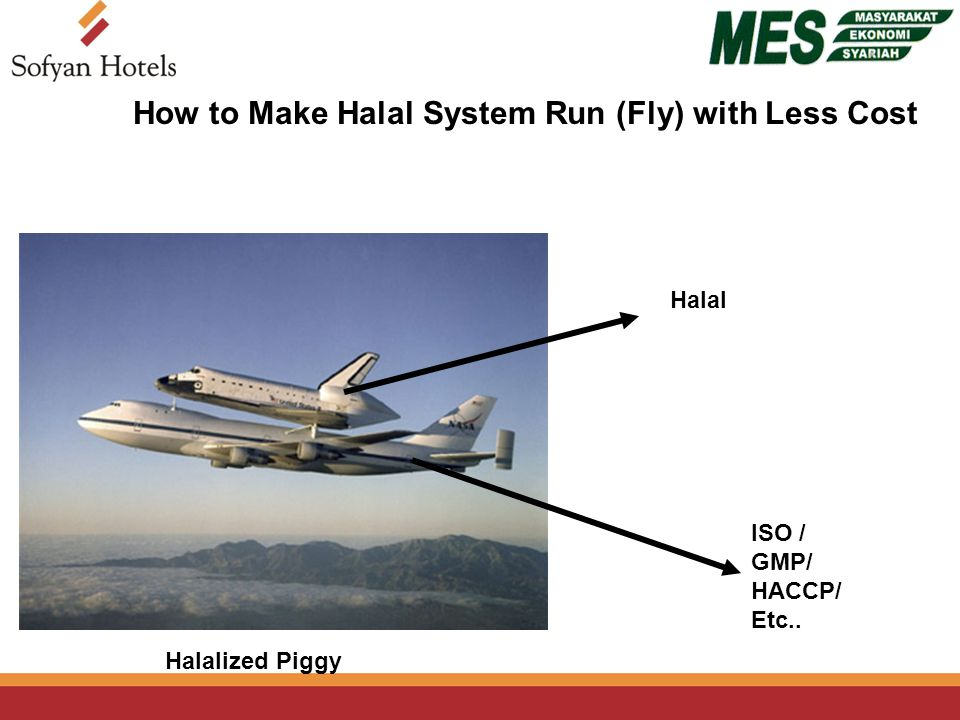 Halal ISO / GMP/ HACCP/ Etc.. Halalized Piggy How to Make Halal System Run (Fly) with Less Cost