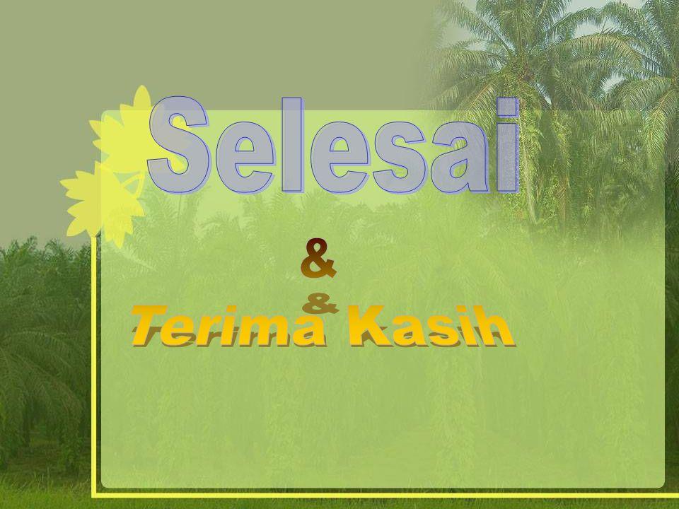 Produksi dalam pengelolaan perkebunan kelapa sawit adalah : Tandan buah segar (TBS) merupakan bunga betina kelapa sawit yang dipanen dan biasa juga disebut dengan tandan atau buah.