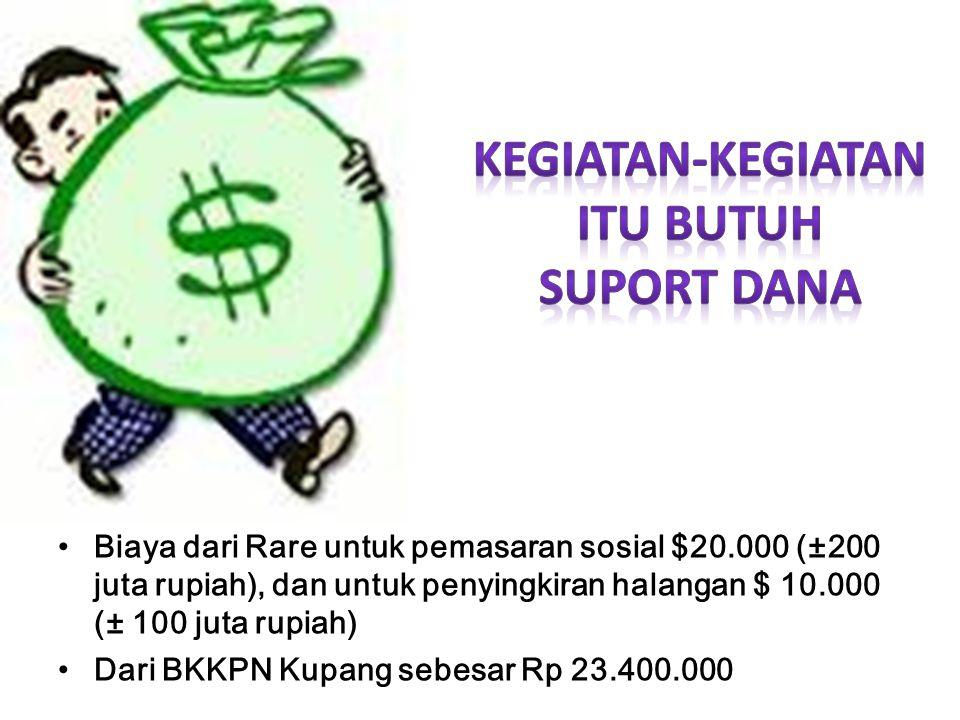 Biaya dari Rare untuk pemasaran sosial $20.000 (±200 juta rupiah), dan untuk penyingkiran halangan $ 10.000 (± 100 juta rupiah) Dari BKKPN Kupang sebesar Rp 23.400.000