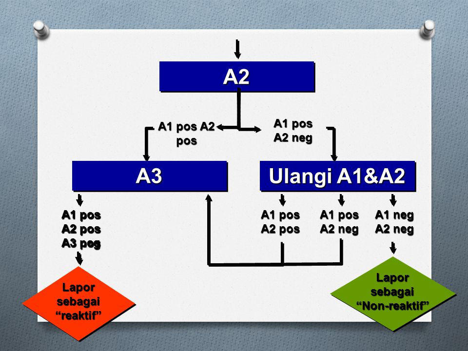 A1 pos A2 pos A2A2 A3A3 A1 pos A2 neg Ulangi A1&A2 A1 pos A2 pos A1 pos A2 neg Lapor sebagai Non-reaktif A1 neg A2 neg Lapor sebagai reaktif A1 pos A2 pos A3 pos A1 pos A2 pos A3 neg