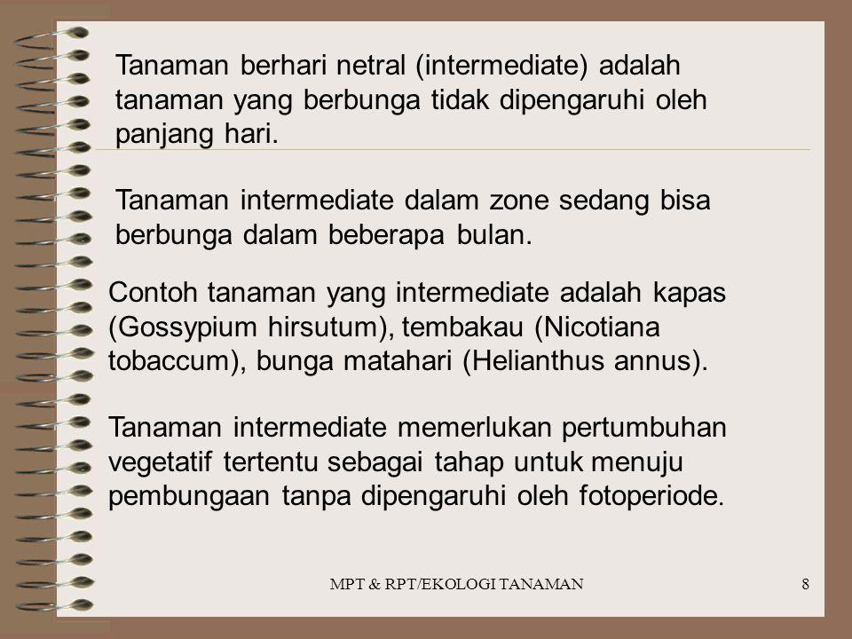 MPT & RPT/EKOLOGI TANAMAN8 Tanaman berhari netral (intermediate) adalah tanaman yang berbunga tidak dipengaruhi oleh panjang hari. Tanaman intermediat