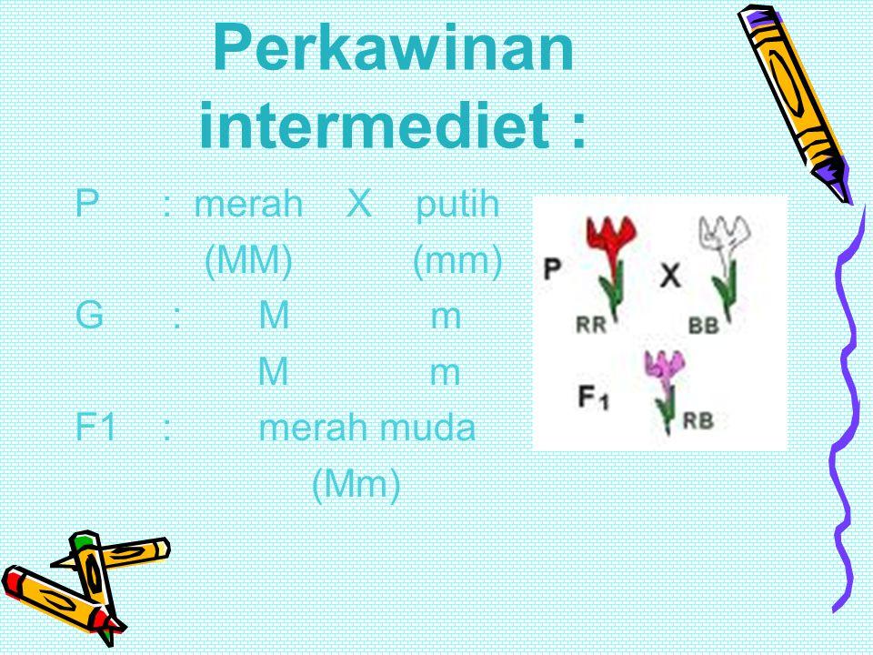 Intermediet / dominan tidak penuh Persilangan antara Anthirinum majus galur murni merah dengan Anthirinum majus berbunga putih hasilnya adalah 100% me