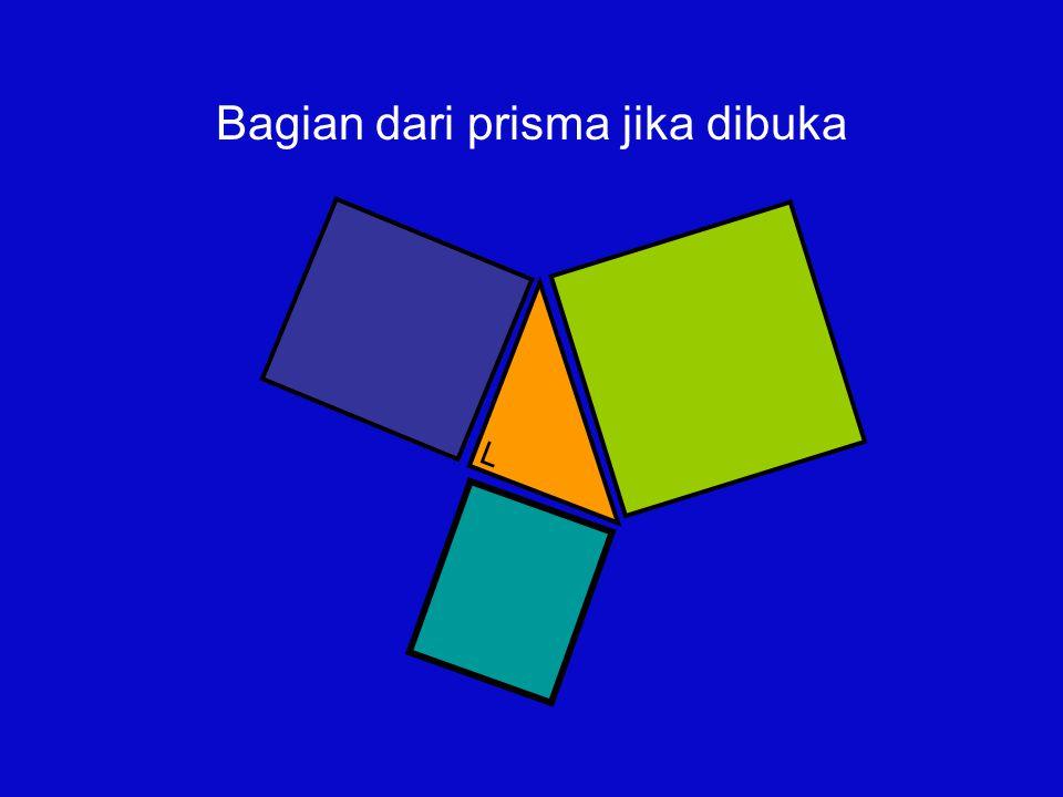 └ Bagian dari prisma jika dibuka