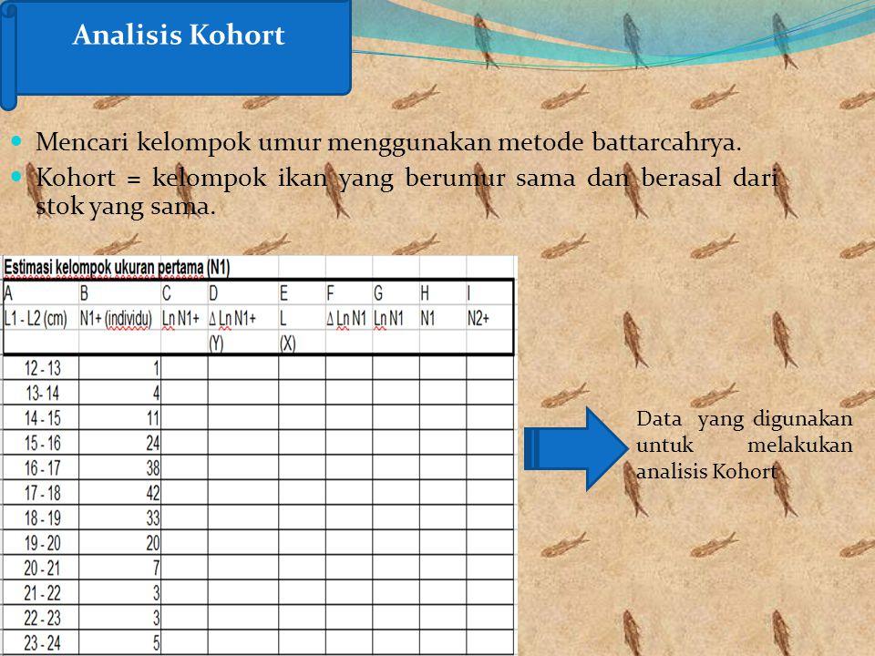 Mencari kelompok umur menggunakan metode battarcahrya. Kohort = kelompok ikan yang berumur sama dan berasal dari stok yang sama. Analisis Kohort Data