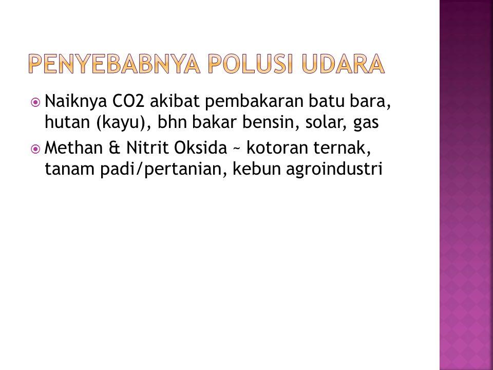  Naiknya CO2 akibat pembakaran batu bara, hutan (kayu), bhn bakar bensin, solar, gas  Methan & Nitrit Oksida ~ kotoran ternak, tanam padi/pertanian, kebun agroindustri
