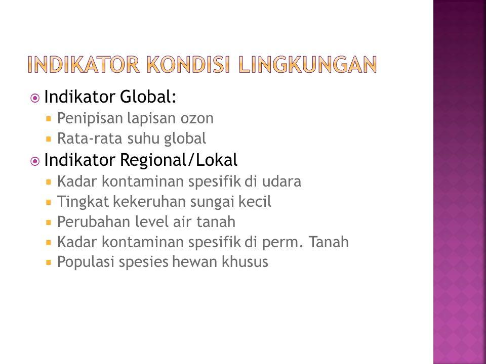  Indikator Global:  Penipisan lapisan ozon  Rata-rata suhu global  Indikator Regional/Lokal  Kadar kontaminan spesifik di udara  Tingkat kekeruh